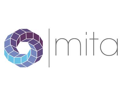 Susitikime su MITA aptartos bendradarbiavimo ir klasterių plėtros galimybės